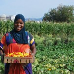 Refugees grow community gardens