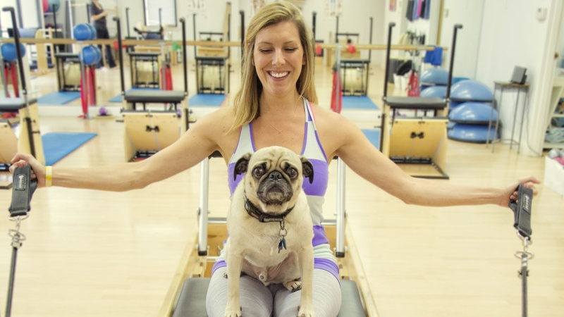 Getting Fit With Fido 2
