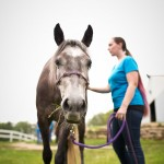 Changing Leads Equine Rescue  Changes Lives 6