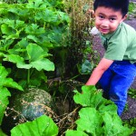 Fat City Farmers Grow Kids, Community and Food 8