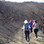 Community Steps Up to Preserve Trails & Open Space 3