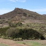 Community Steps Up to Preserve Trails & Open Space 2