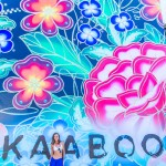 Kaaboo in Review 9