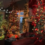Area Couple Take Christmas Décor to New Heights