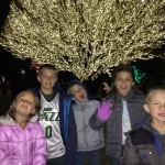 The Spectacular Willow Tree 2