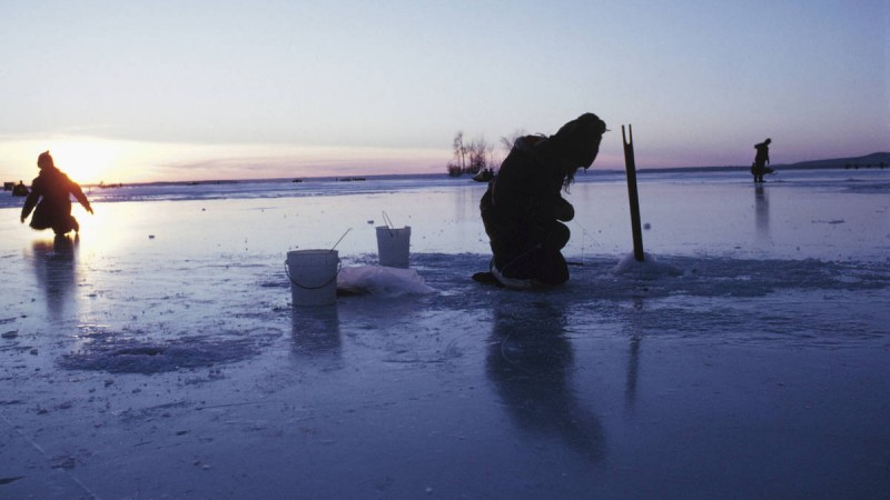 The Frosty Lures of Ice Fishing