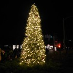 Village of Lake Zurich Holds Inaugural Tree Lighting