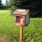 Little Free Libraries 3