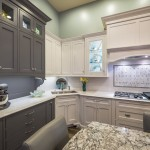 Kitchen Trends 5