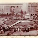 The 1904 St. Louis World's Fair 1