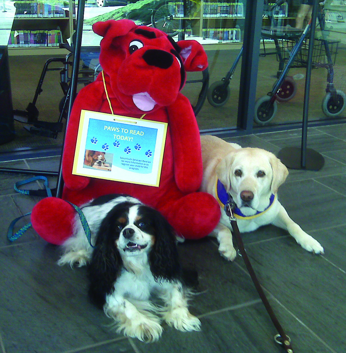 """""""Angels on Paws"""" Bring Joy to Hospital Patients 4"""