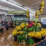 Gelson's Market Holds Grand Opening in Del Mar 2