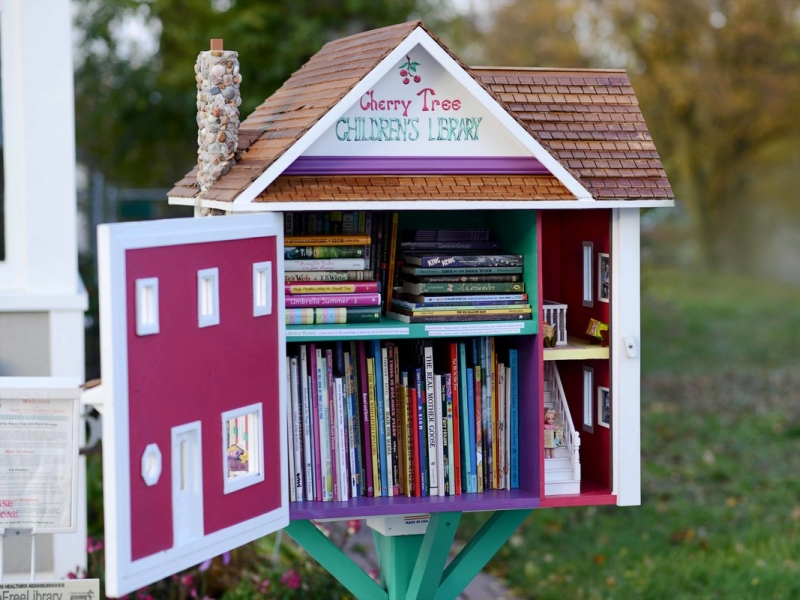 Little Free Libraries 8