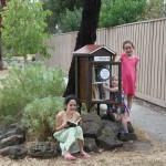 Little Free Libraries 7