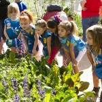 Desert Botanical Garden offers wide variety of classes for kids and adults 4