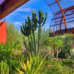 Desert Botanical Garden offers wide variety of classes for kids and adults 2