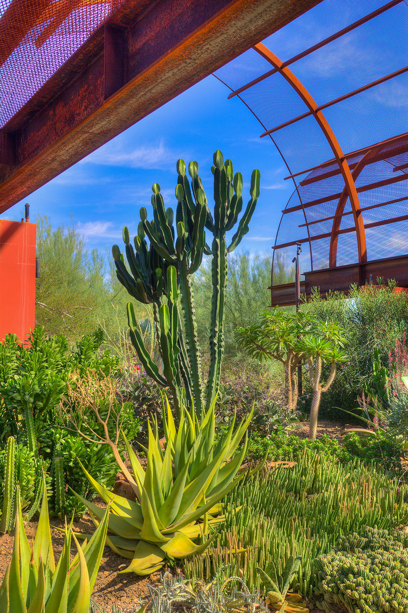 Desert Botanical Garden offers wide variety of classes for