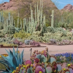 Desert Botanical Garden offers wide variety of classes for kids and adults 1