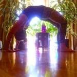 Mastering a Month of Yoga
