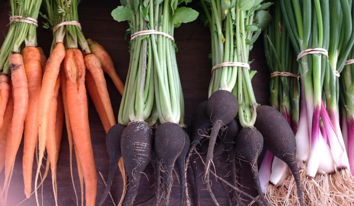 Farm Markets Offer Fresh Produce, Green Alternative 7