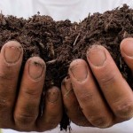 Recycled City makes composting easy 2