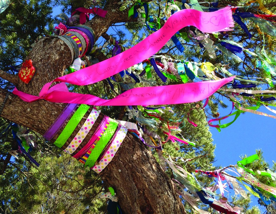 Wishes Do Grow on Trees! 7