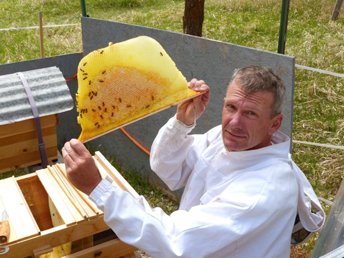 Saving Bees, Caring for Community 6