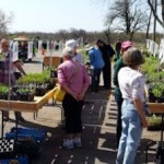 Citizens for 