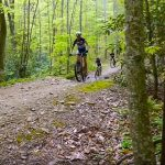 Asheville: The East Coast's Cycling Hub 1