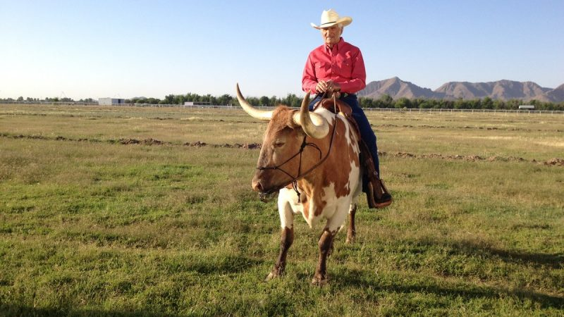 Tex Earnhardt and His Family Have Strong Roots in Chandler…and That Ain't No Bull 5
