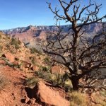 Grand Canyon Hike: Rugged and Rewarding 2