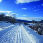 Greatest Trails of the Roaring Fork Valley 2