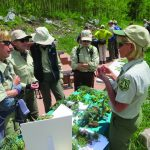 The Volunteer Rangers of the Forest Conservancy 4