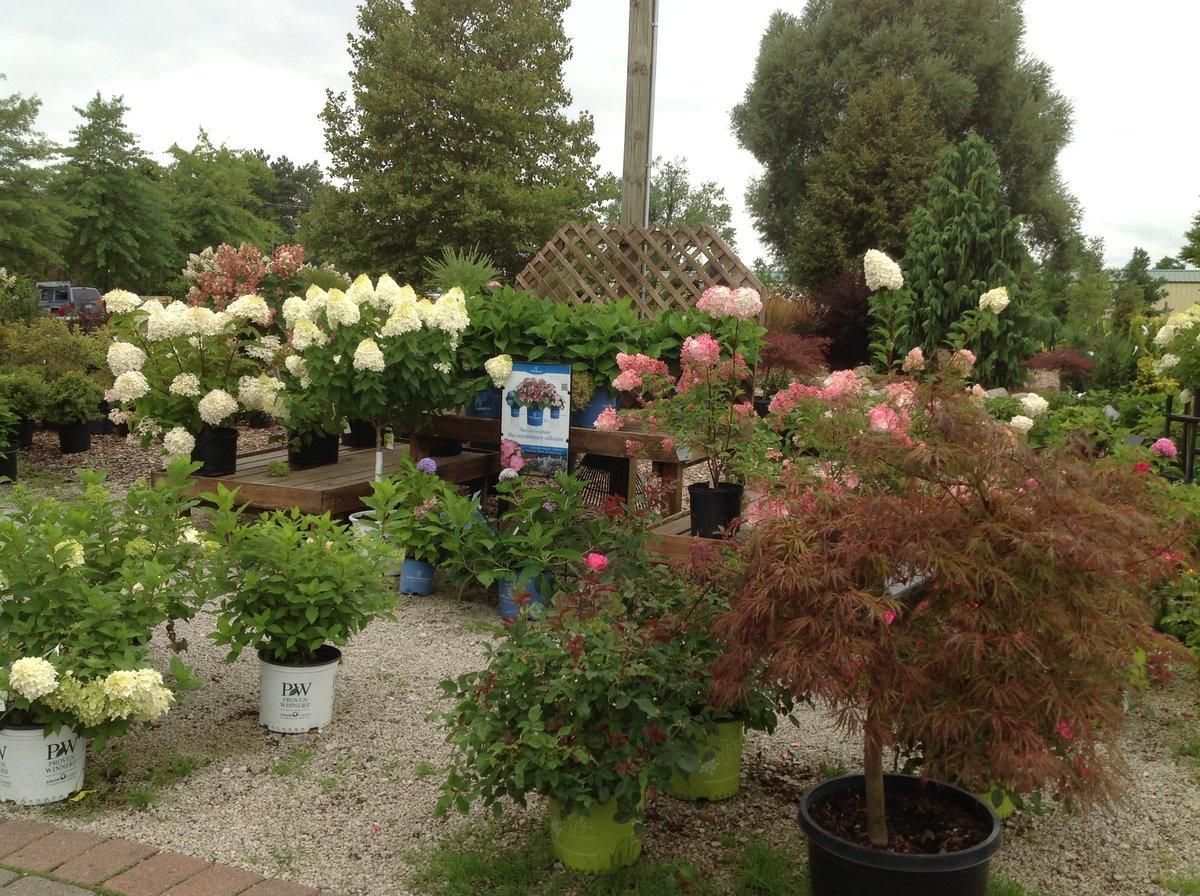 Let\'s rock it out with Boyert\'s Greenhouse & Farm – Medina County ...