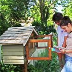 Little Free Libraries: Coming to a Yard Near You 4