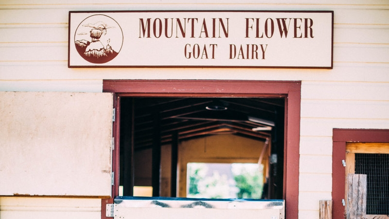 Mountain Flower Dairy 9