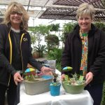 Let's rock it out with Boyert's Greenhouse & Farm 2