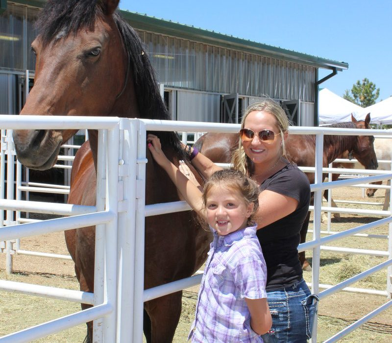Heyday for Horses at Harmony Equine Center 7