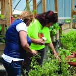 Clinic Gardens: A Locally-Grown Rx for Health 3