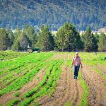 Central Oregon Farming 1