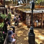 Fifty Remarkable Years of the Sawdust Art Festival