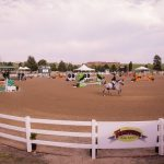 Mayor's Cup at Colorado Horse Park 9