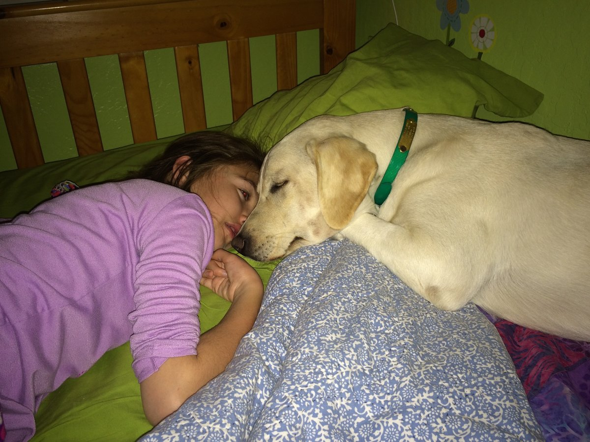 Can A Twelve Year Old Get A Service Dog