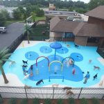 Petropolis Celebrates Grand Opening of Canine Cove