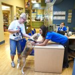 Humane Society of Missouri's Kuehner Center   2