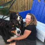 Caring For Pets And More: Animal House Pet Care 3