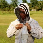 Bees find a hive in Liberty