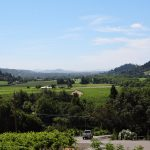 Sonoma County - Five Exceptional Wine Tasting Experiences 12