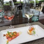 Sonoma County - Five Exceptional Wine Tasting Experiences 6