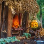 Second Annual Enchanted Pumpkin Garden 3